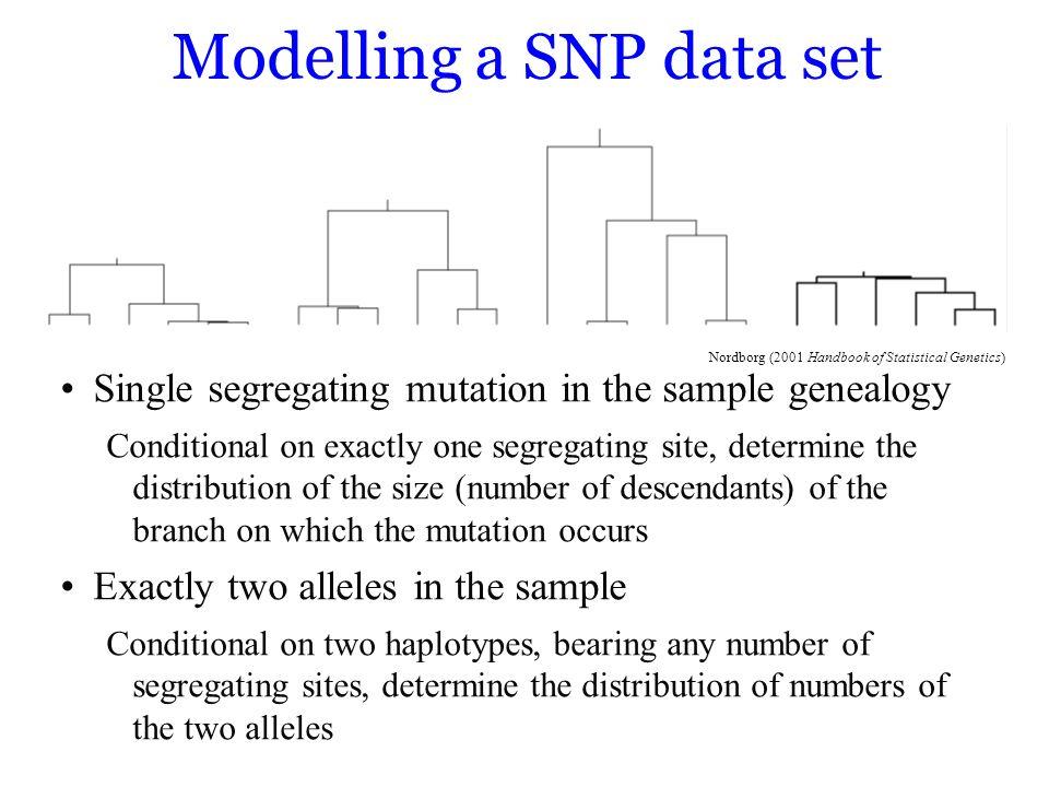 Modelling a SNP data set