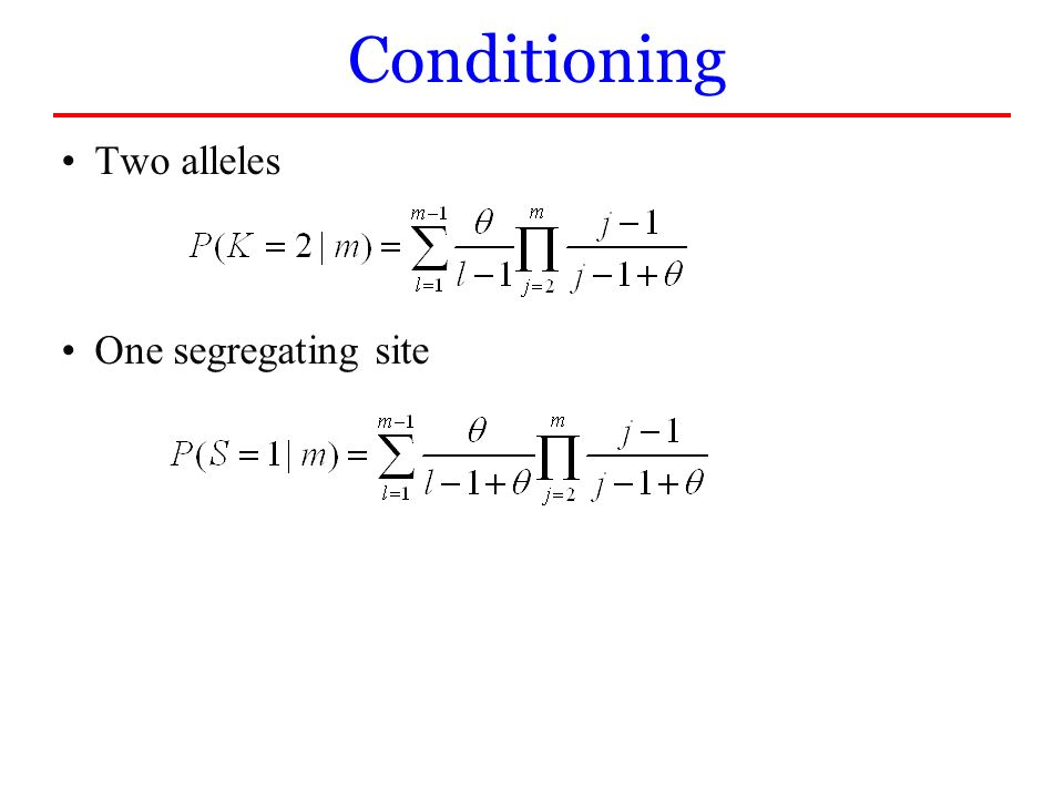 Conditioning Two alleles One segregating site