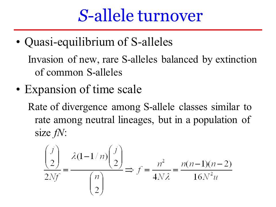 S-allele turnover Quasi-equilibrium of S-alleles