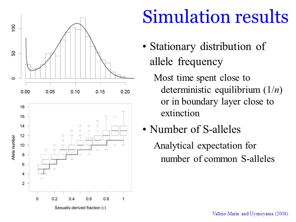 Simulation results Stationary distribution of allele frequency