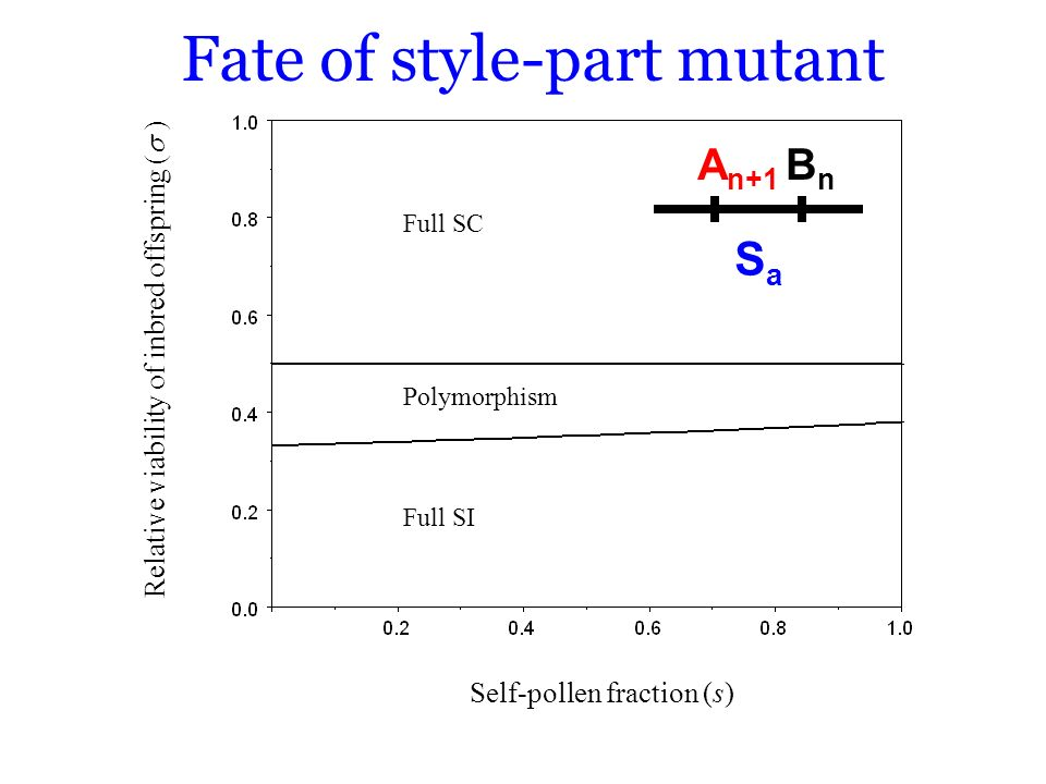 Fate of style-part mutant