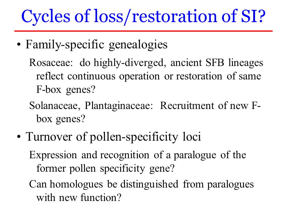Cycles of loss/restoration of SI