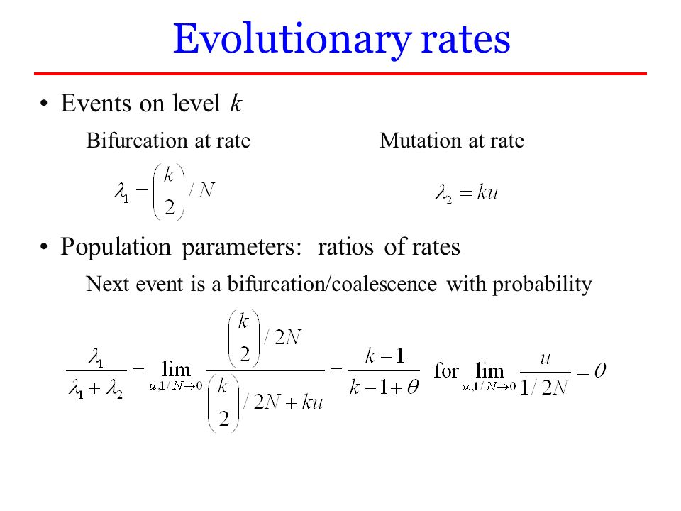 Evolutionary rates Events on level k