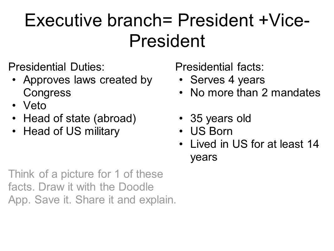 Executive branch= President +Vice-President