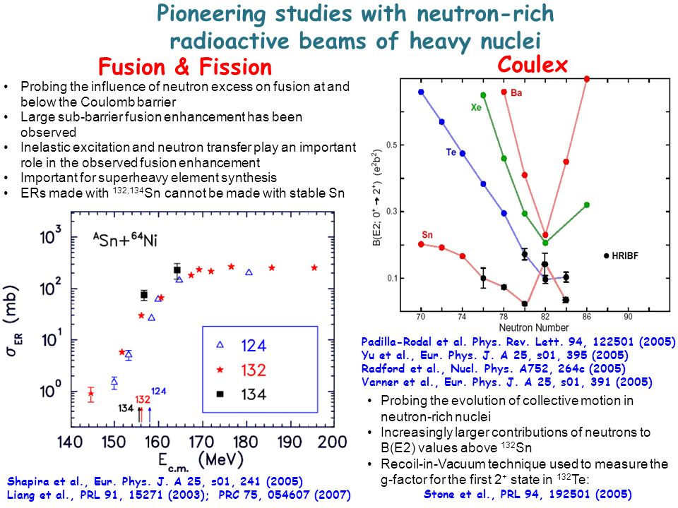 Pioneering studies with neutron-rich radioactive beams of heavy nuclei
