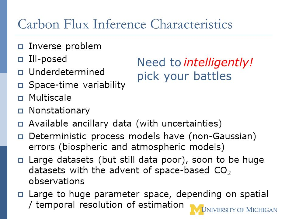 Carbon Flux Inference Characteristics