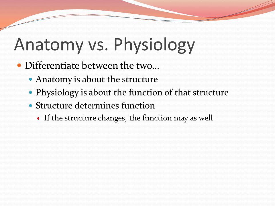 Atemberaubend Differentiate Anatomy And Physiology Ideen - Anatomie ...