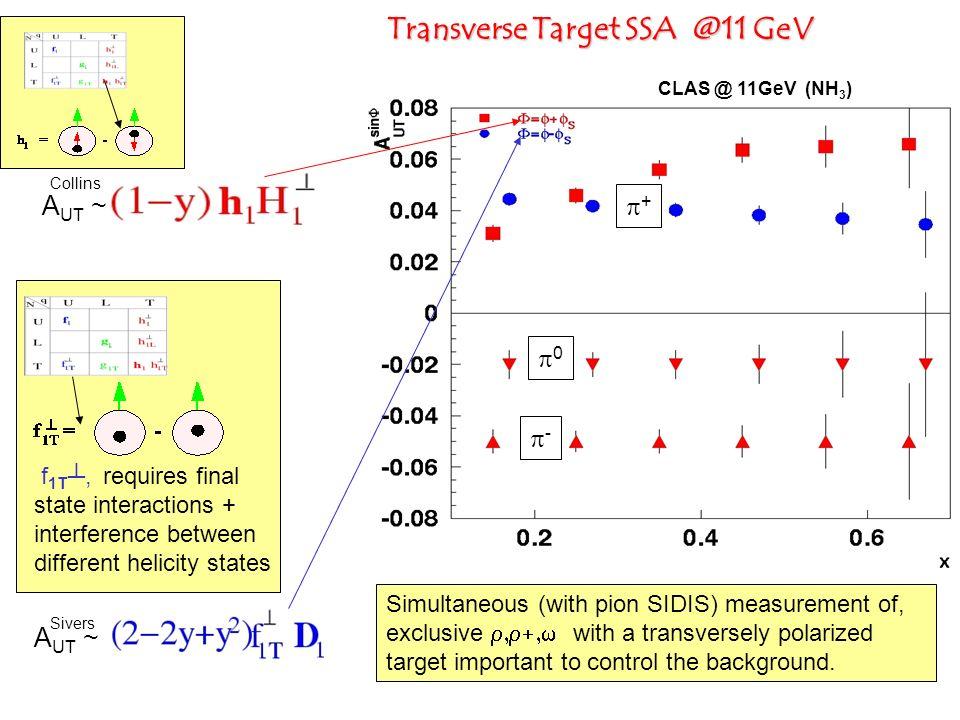 Transverse Target SSA @11 GeV