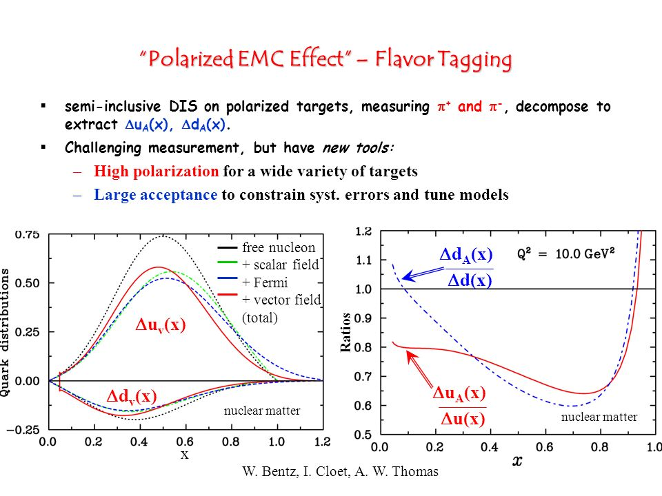 Polarized EMC Effect – Flavor Tagging