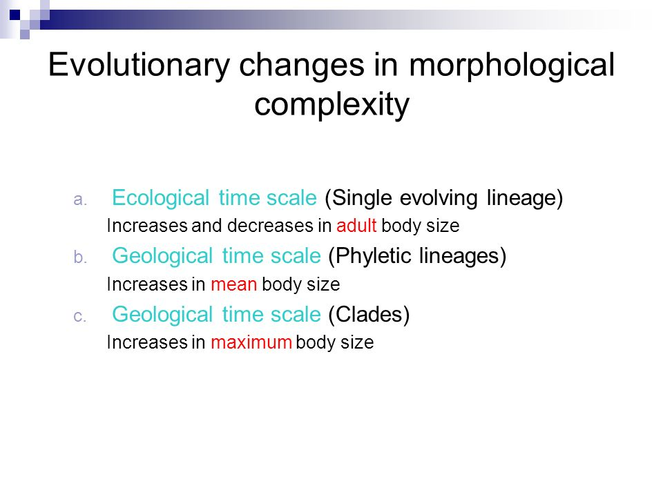 Evolutionary changes in morphological complexity