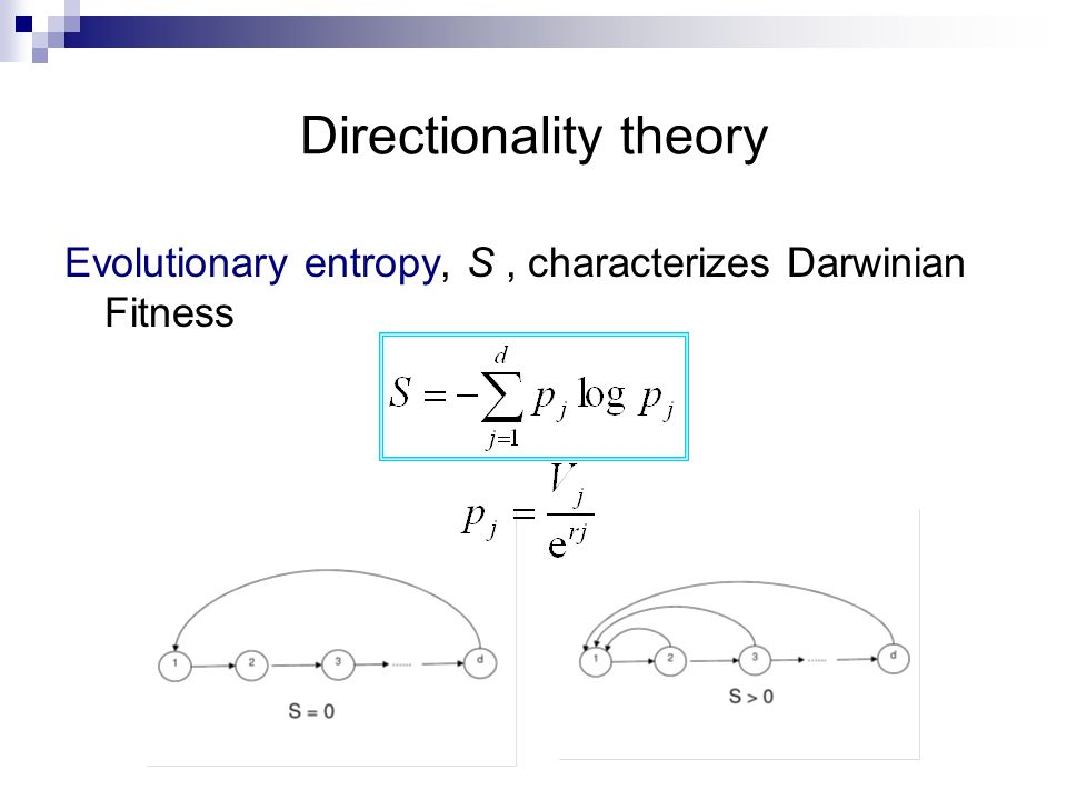 Directionality theory