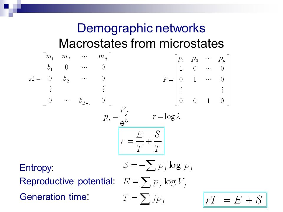 Demographic networks Macrostates from microstates