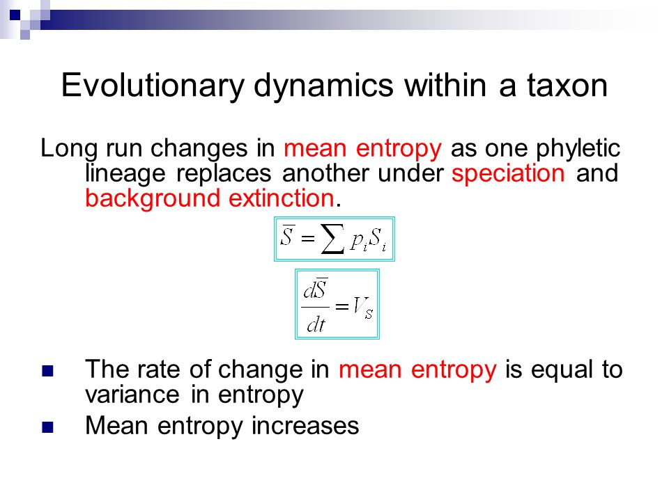 Evolutionary dynamics within a taxon