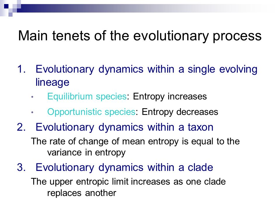 Main tenets of the evolutionary process