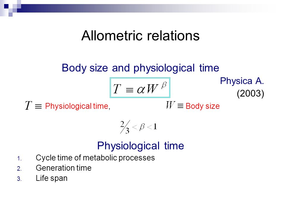 Body size and physiological time