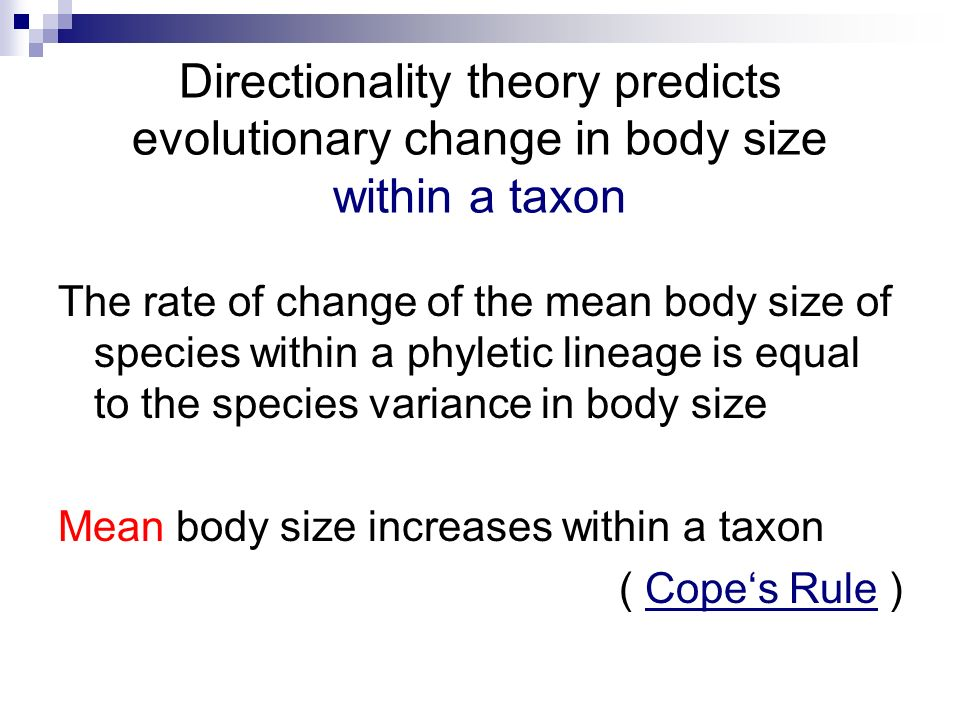 Directionality theory predicts evolutionary change in body size within a taxon
