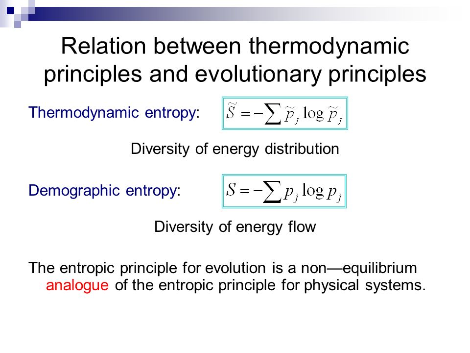 Relation between thermodynamic principles and evolutionary principles