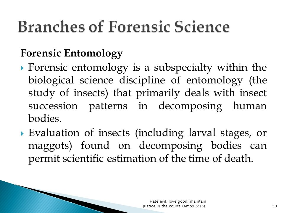 an analysis of the several forensic science branches Our graduates currently have careers in several forensic science fields for  various  an attention to detail necessary for thorough and rigorous evidence  analysis.