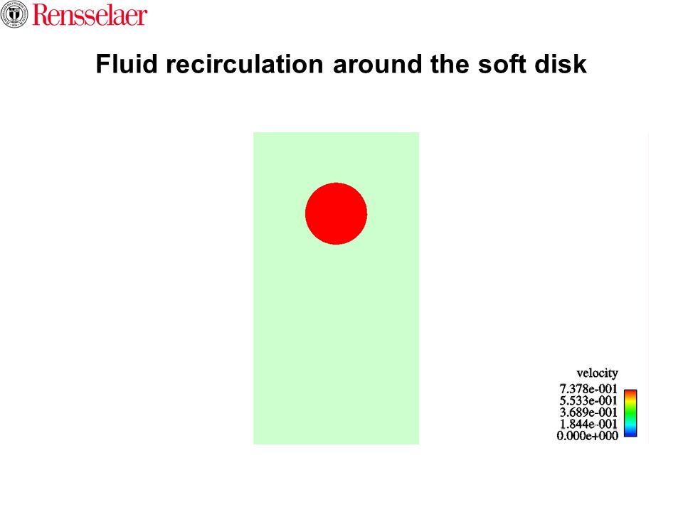 Fluid recirculation around the soft disk