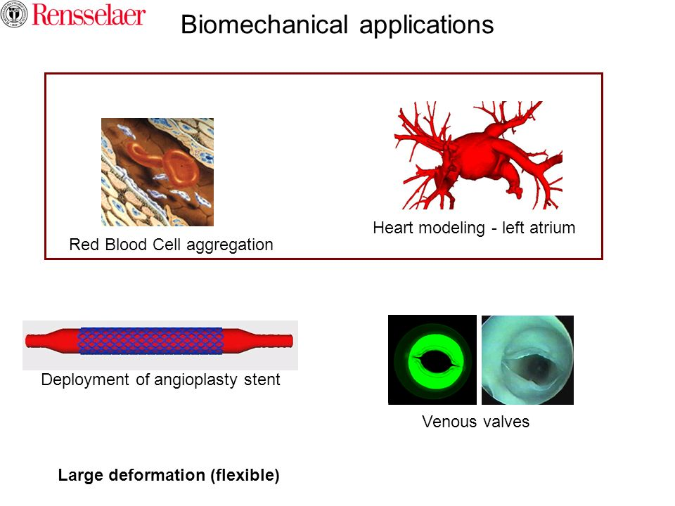 Biomechanical applications