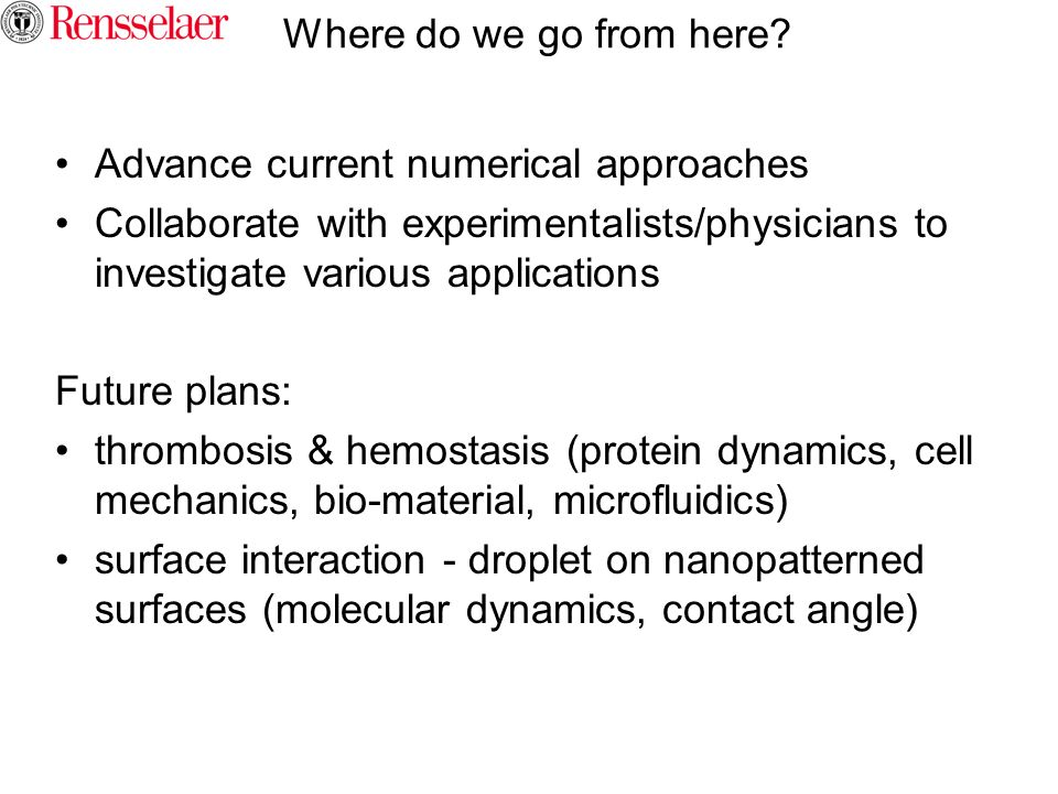 Where do we go from here Advance current numerical approaches. Collaborate with experimentalists/physicians to investigate various applications.