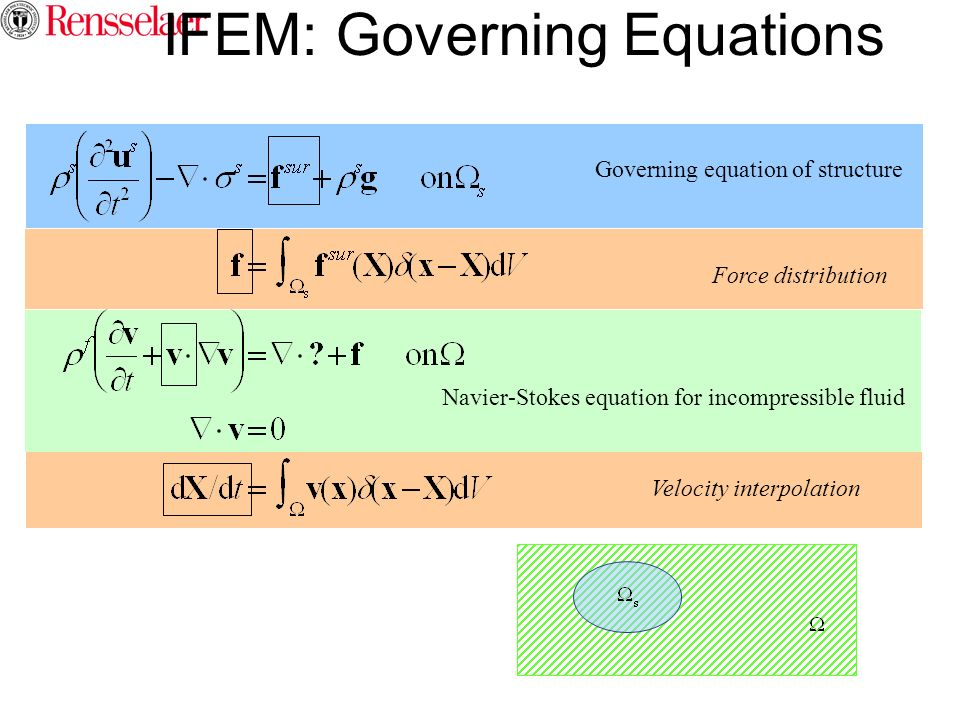IFEM: Governing Equations