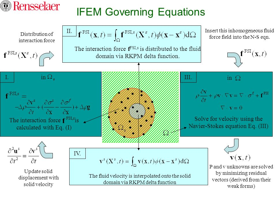 IFEM Governing Equations