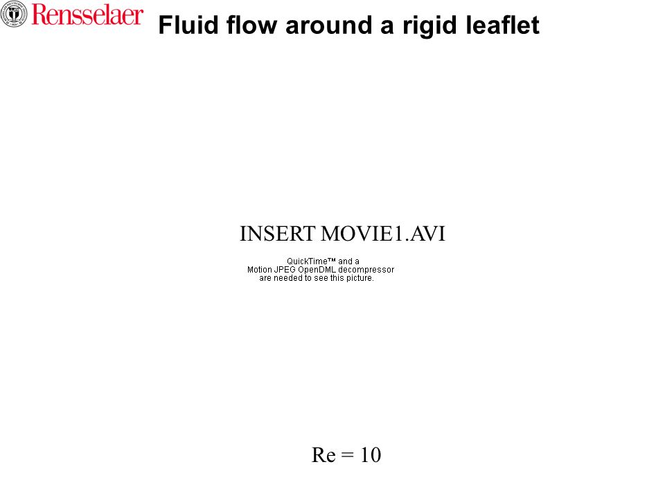 Fluid flow around a rigid leaflet