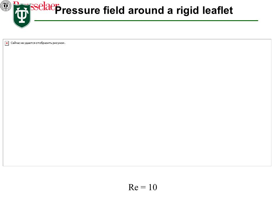 Pressure field around a rigid leaflet