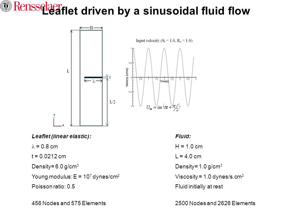 Leaflet driven by a sinusoidal fluid flow