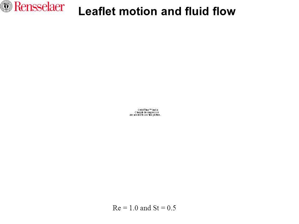 Leaflet motion and fluid flow