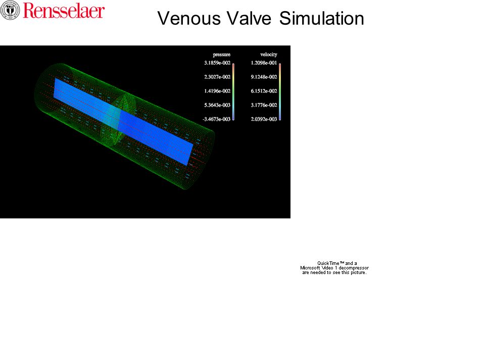 Venous Valve Simulation