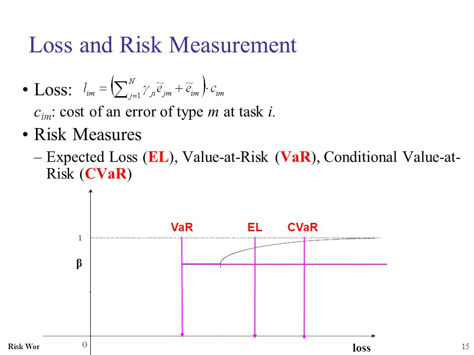 Loss and Risk Measurement