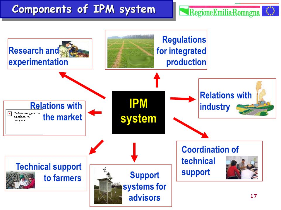 Components of IPM system