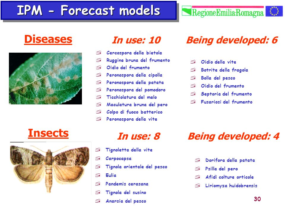 IPM - Forecast models Diseases Insects In use: 10 Being developed: 6