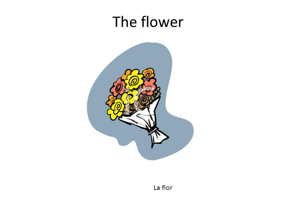 The flower La flor