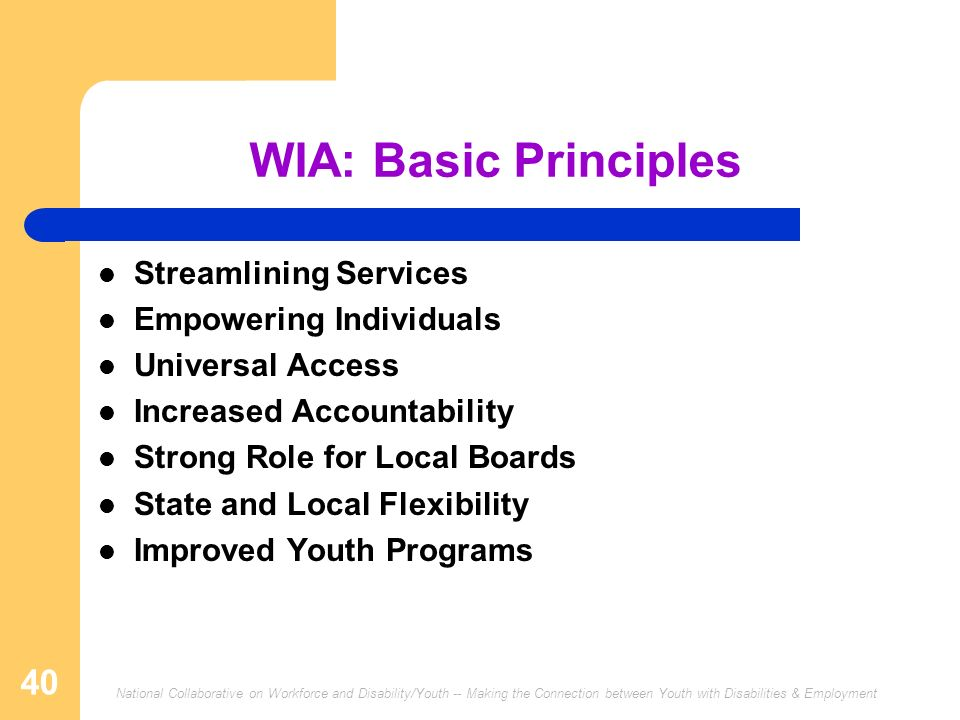 WIA: Basic Principles Streamlining Services Empowering Individuals