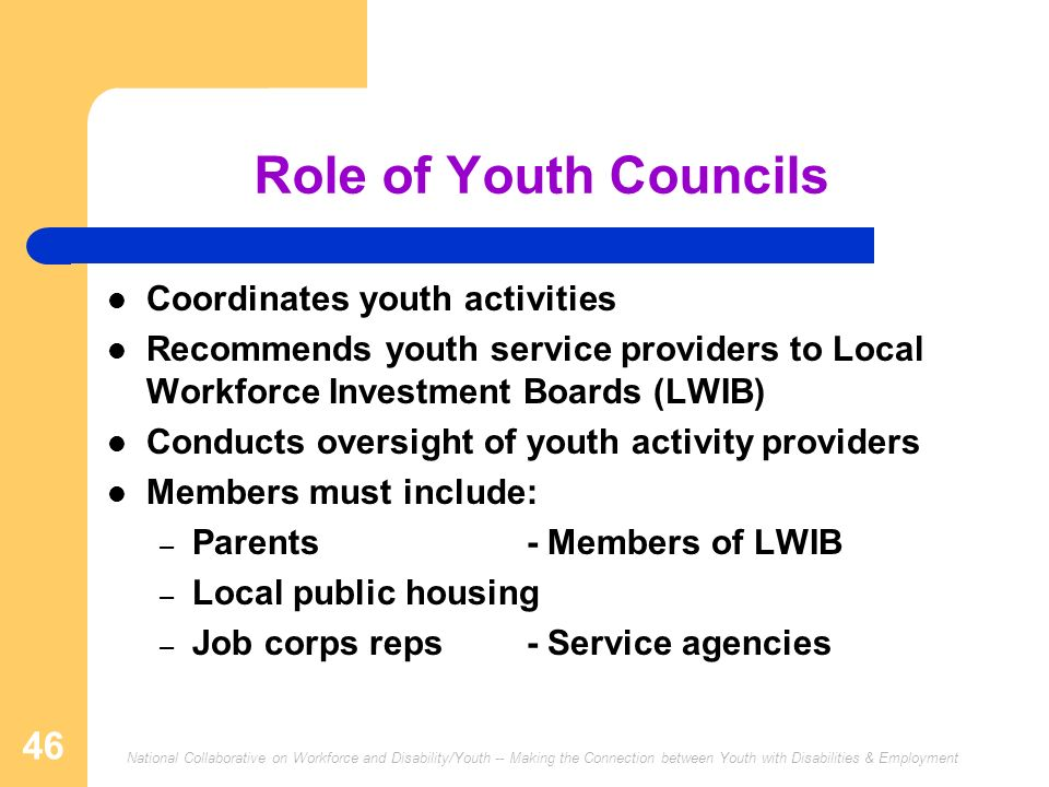 Role of Youth Councils Coordinates youth activities