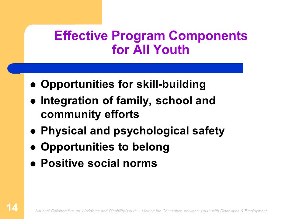 Effective Program Components for All Youth