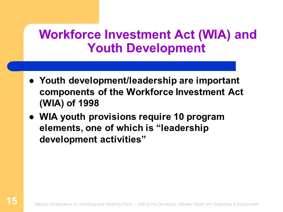 Workforce Investment Act (WIA) and Youth Development