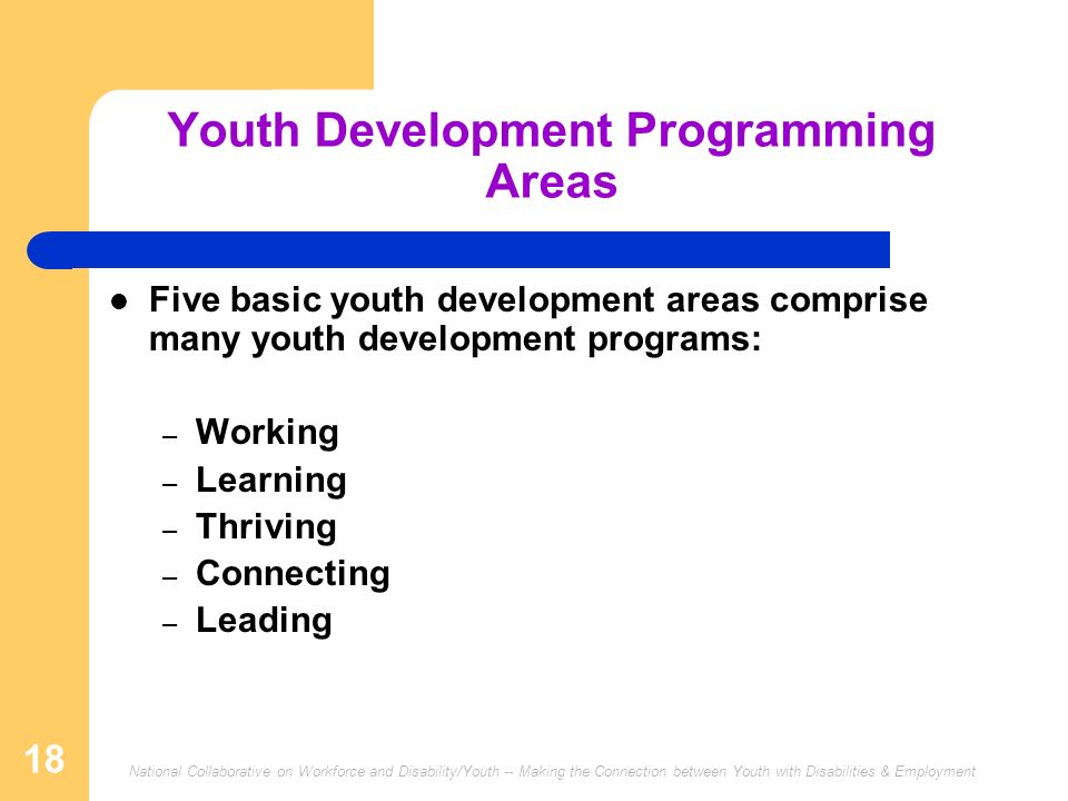Youth Development Programming Areas