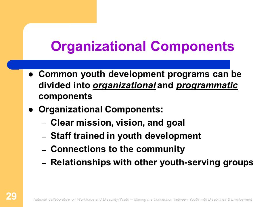 Organizational Components