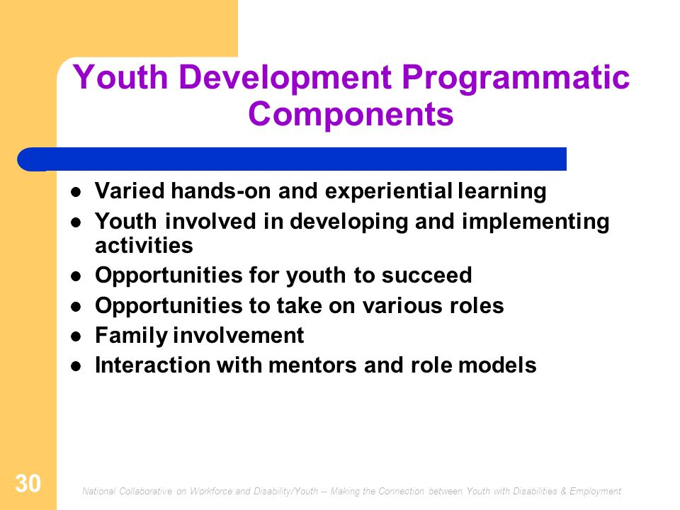 Youth Development Programmatic Components