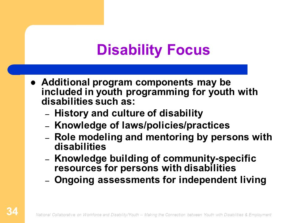 Disability Focus Additional program components may be included in youth programming for youth with disabilities such as: