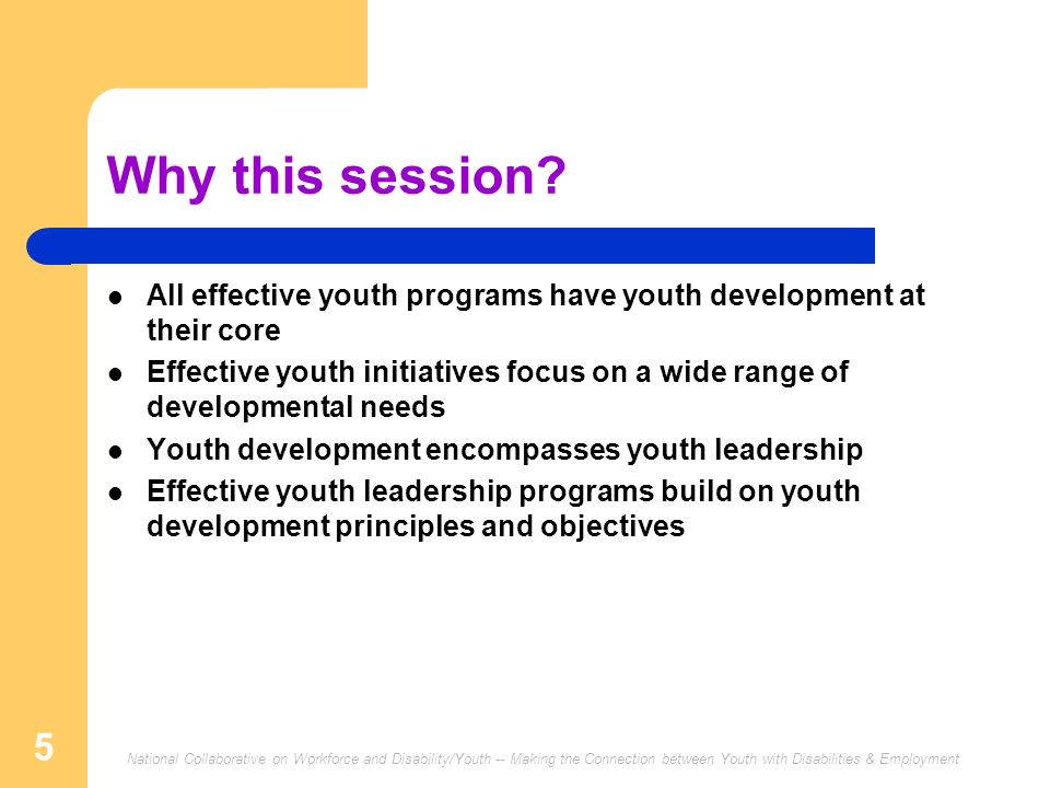 Why this session All effective youth programs have youth development at their core.