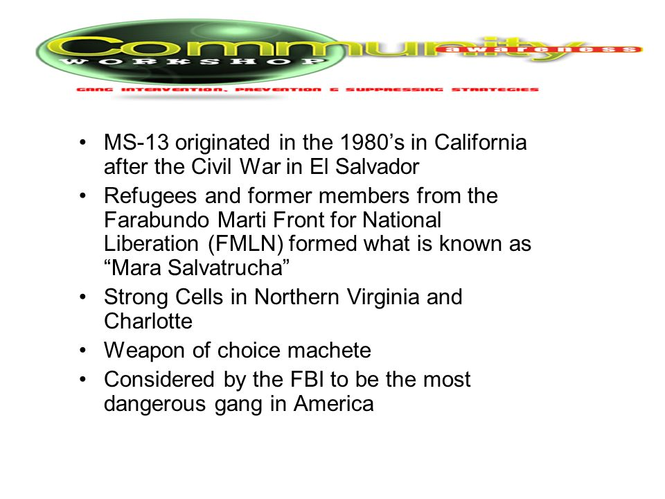 MS-13 originated in the 1980's in California after the Civil War in El Salvador