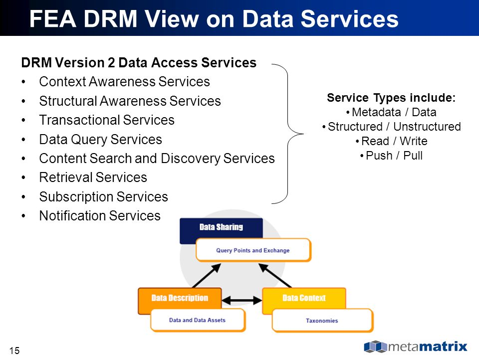 FEA DRM View on Data Services