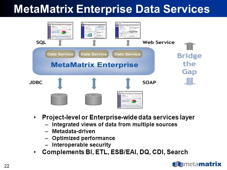 MetaMatrix Enterprise Data Services