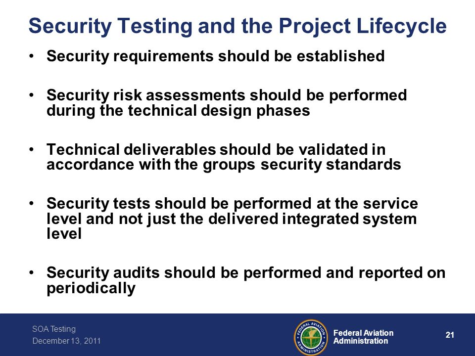 Security Testing and the Project Lifecycle