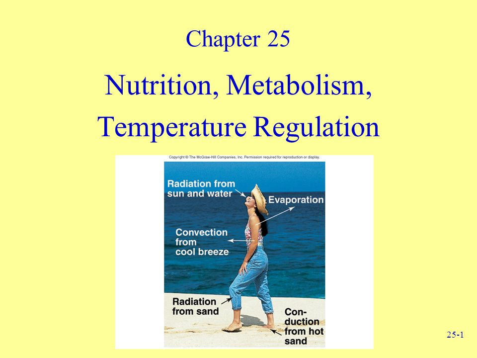 metabolic nutrition study guide International journal of sport nutrition & exercise metabolism international journal of sports physiology and performance journal of aging and physical activity human kinetics coach education student resources web resources e-book textbooks my ancillaries instructor resources.